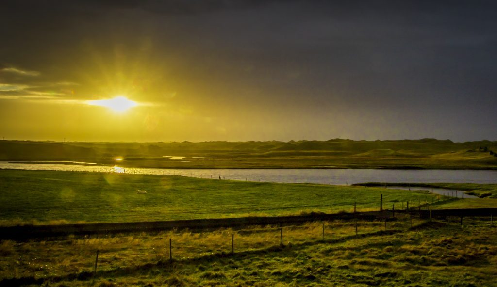 Sunset over pasture in Iceland